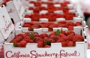 The California Strawberry Festival takes place May 16 & 17, 2015 at the Strawberry Meadows of College Park in Oxnard, Calif.