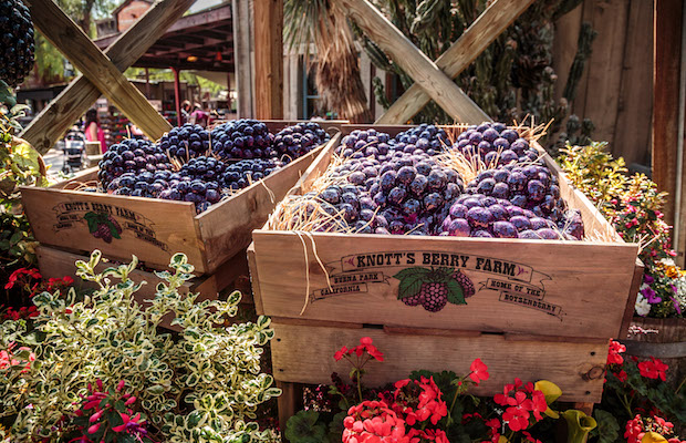 Celebrate all things boysenberry at Knott's from April 1 to 23.